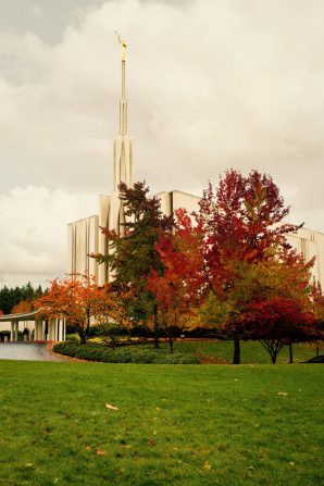 A partial view of the Seattle Washington Temple, with trees changing colors on the grounds. The spire rises above the trees.