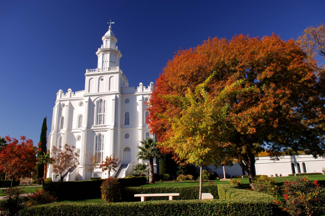 A partial view of the front of the St. George Utah Temple and grounds around the front of the temple, including trees and bushes changing colors in autumn.
