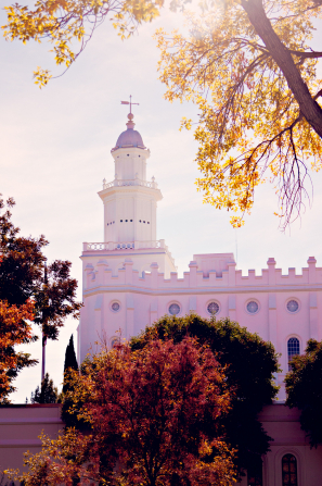 The side of the St. George Utah Temple, with a view of the spire and the trees around the grounds of the temple.