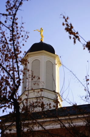 The Vernal Utah Temple spire, framed by branches of a tree.