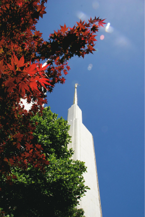A spire of the Washington D.C. Temple, with red and green trees to the left of it.