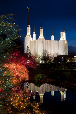 The entire Washington D.C. Temple lit up in the evening, with the reflecting pond in the foreground and trees on the grounds covered in Christmas lights.