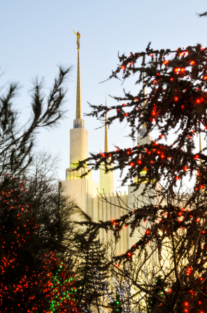 A view of part of the Washington D.C. Temple, with three of the spires visible between trees covered in Christmas lights.