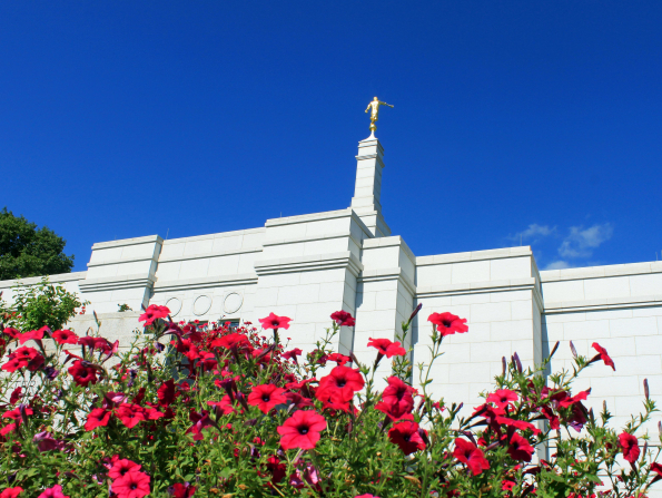 The back of the Winter Quarters Nebraska Temple, with pink flowers on the ground.