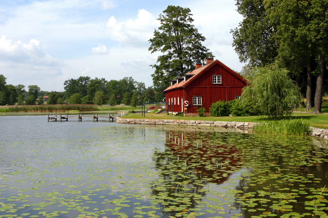 A red house in Sweden surrounded by green grass and tall trees, sitting by a small lake filled with lily pads.