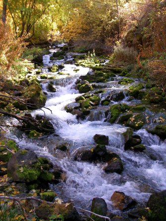 A river runs over rocks near trees with yellow, orange, and green leaves.