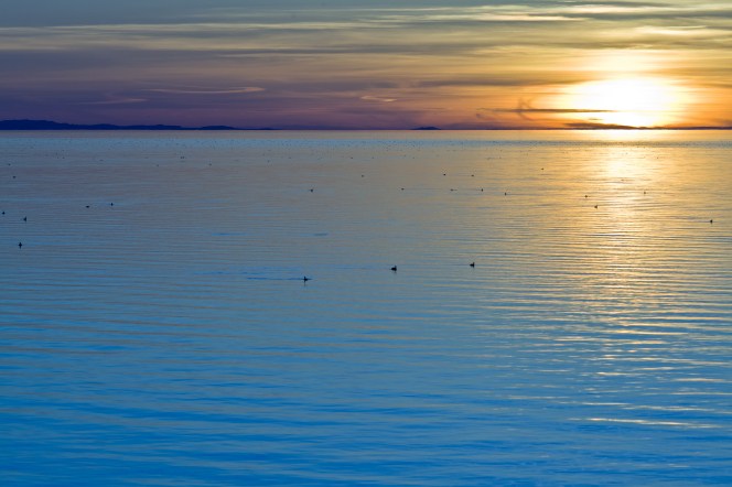 The sun sets over a lake with ducks swimming and ripples in the water.