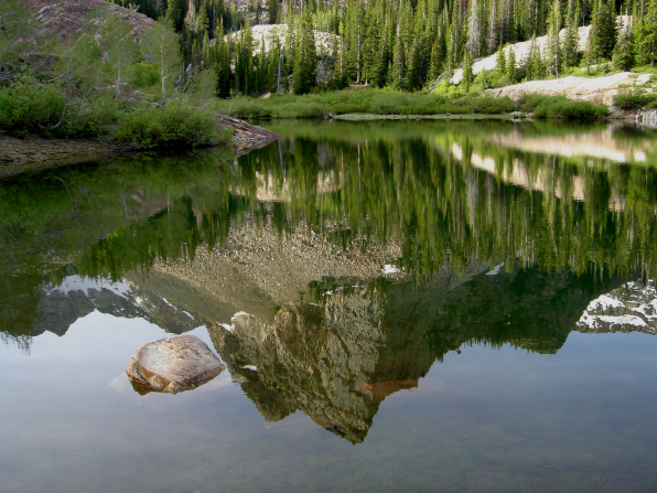 The Rocky Mountains and tall green trees reflected in a lake.