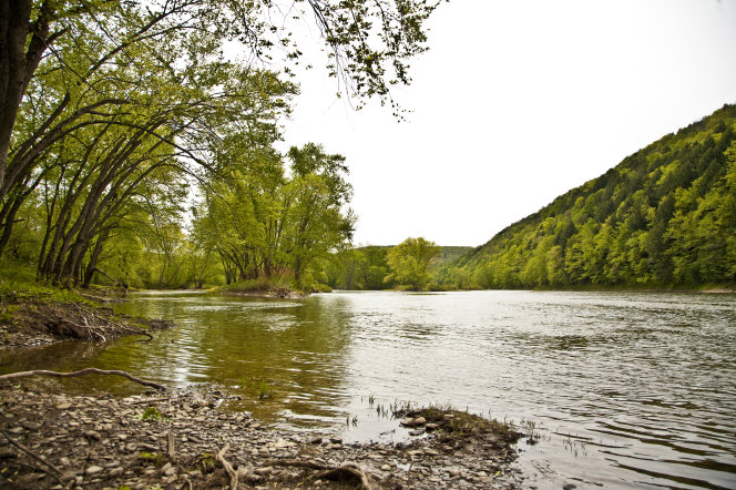 The Susquehanna River in Harmony, Pennsylvania, with trees on the banks.