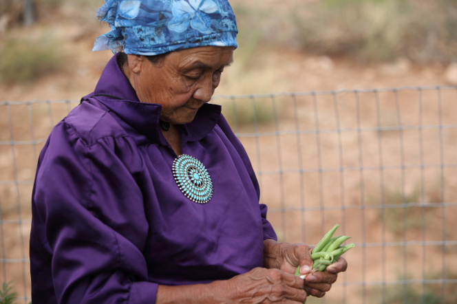 An Indian woman in a purple blouse and blue head wrap, standing outside and holding green beans.
