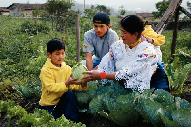 A mother from Ecuador kneeling and handing a green vegetable to her son while carrying another child on her back, with an older son close by.