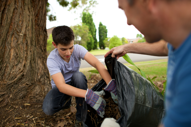 A young brown-haired man in jeans, a T-shirt, and work gloves kneels by a tree and fills a large black garbage bag with leaves.