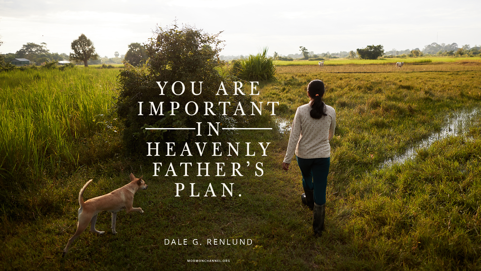 Daily Quote: You Are Important in God\'s Plan | Inspiration