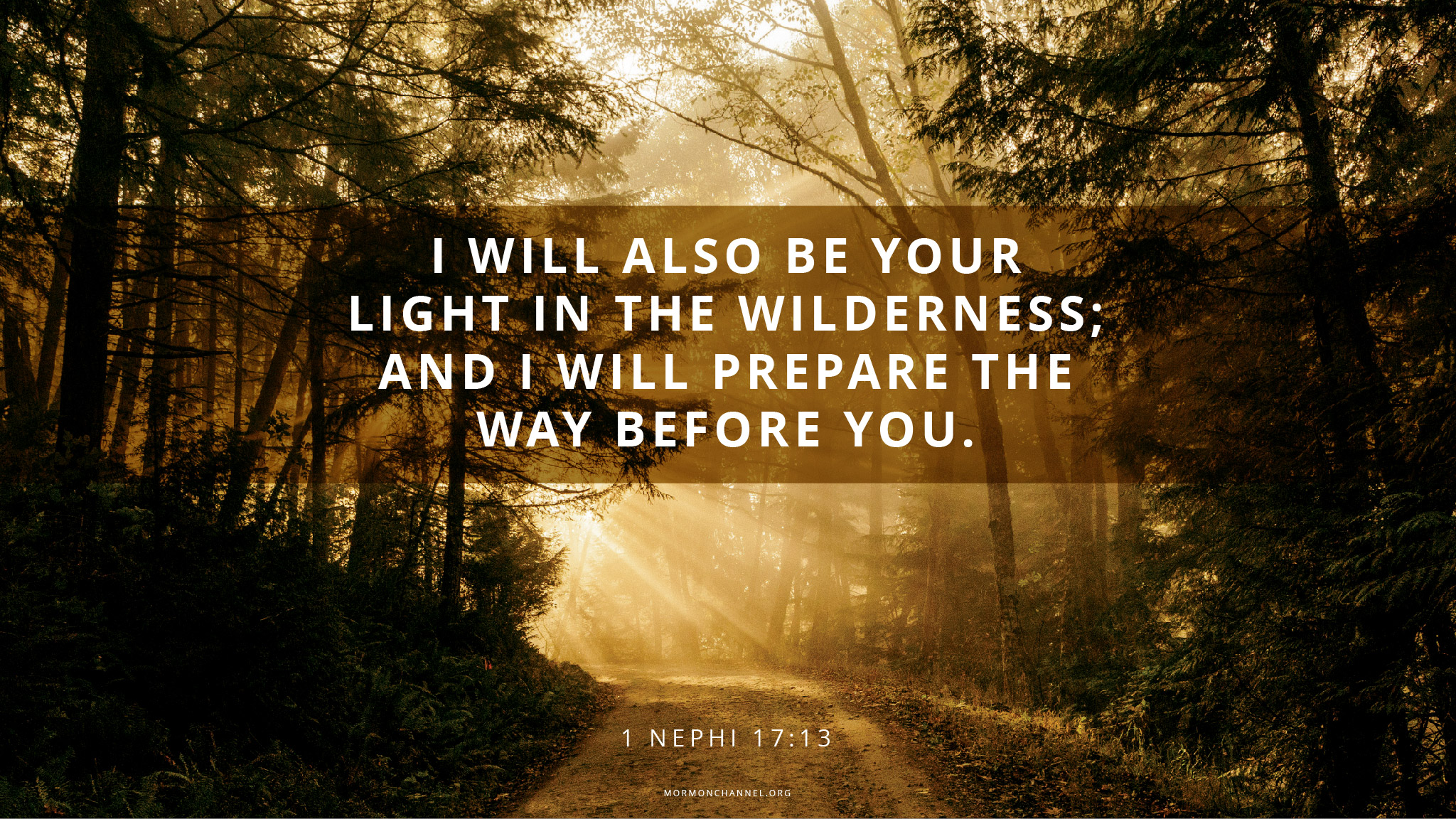 Daily Quote Light In The Wilderness Mormon Channel