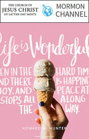 Life is wonderful, even in the hard times, and there is happiness, joy, and peace at stops all along the way. —Howard W. Hunter